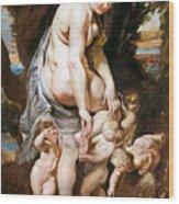 Rubens: Venus, C1606-09 Wood Print