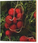 Rubies From The Field Wood Print