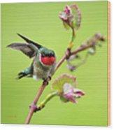 Ruby Garden Hummingbird Wood Print