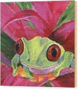 Ruby The Red Eyed Tree Frog Wood Print