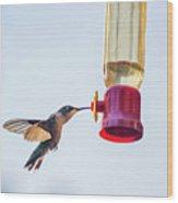 Ruby-throated Hummingbird 5 Wood Print