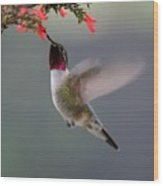 Ruby Throated Hummingbird Wood Print