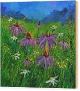 Rudbeckias 4551 Wood Print