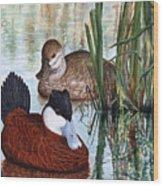 Ruddy Ducks Wood Print