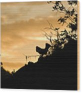 Ruffle Grouse Dusk Wood Print