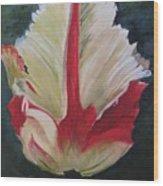 Ruffled Tulip  Wood Print