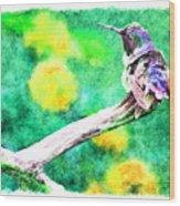 Ruffled Hummingbird - Digital Paint 5 Wood Print