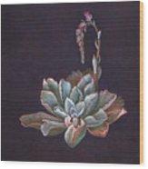 Ruffles In Bloom Wood Print