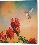 Rufous Dream Wood Print