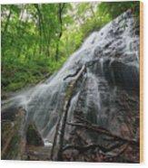 Rufus Morgan Falls Wood Print