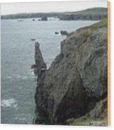 Rugged Coastline  Wood Print