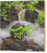 Rugged Landscape Wood Print
