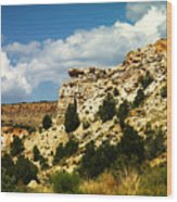 Rugged New Mexico Wood Print