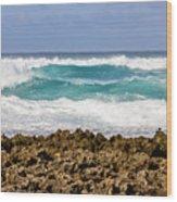 Rugged Shores Wood Print