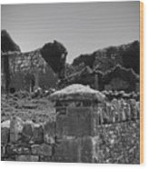 Ruins In The Burren County Clare Ireland Wood Print