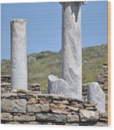 Ruins Of Delos Wood Print