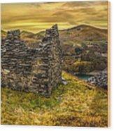 Ruins Of Snowdonia Panorama Wood Print