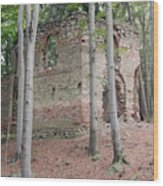 Ruins Of The Baroque Chapel Of St. Mary Magdalene Wood Print