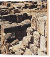 Ruins Of Zippori Wood Print
