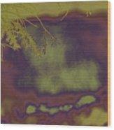 Ruminant In Ignorant Peace Wood Print