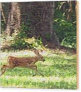 Run Bambi Run Wood Print