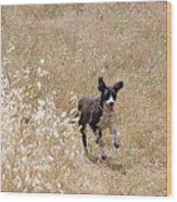 Run Puppy Run Wood Print