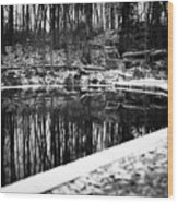 Runeberg's Fountain Wood Print