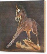 Running Foal Wood Print