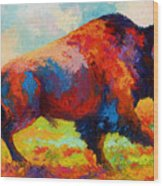Running Free - Bison Wood Print by Marion Rose