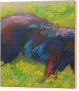 Running Free - Black Bear Cub Wood Print