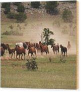 Running Herd Wood Print