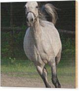 Running Horse Wood Print