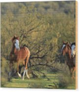 Running In The Desert Wood Print