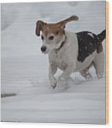 Running Through The Snow Wood Print