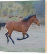 Running Wild Stallion Wood Print