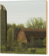 Rural Americana-02 Wood Print