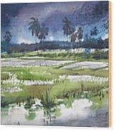 Rural Bengal 5 Wood Print