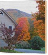 Rural Colorful Autumn Landscape 4 Wood Print