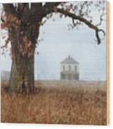 Rural Farmhouse And Large Tree Wood Print