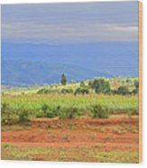 Rural Landscape In Tanzania Wood Print