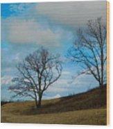 Rural Landscape - Skyline Drive Wood Print