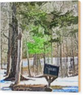 Rural Mailbox In The Snow 1 Wood Print
