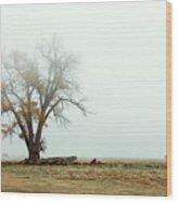 Rural Pasture And Tree Wood Print