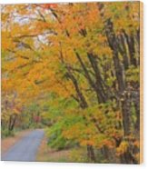 Rural Road Wood Print