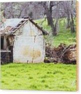 Rural Ruin Wood Print