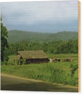 Rural Village Wood Print