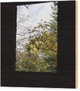 Rush Windows 1 Wood Print