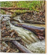 Rushing Stream Wood Print