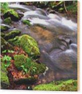 Rushing Stream Monongahela National Forest Wood Print