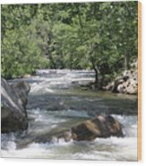 Rushing Waters Wood Print